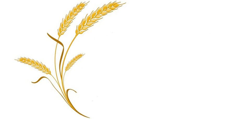 Wheat logo 4